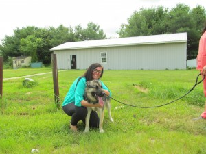 Cecil County Animal Shelter Opens Quietly; Renovations Cut Number of Kennels from 51 to 40